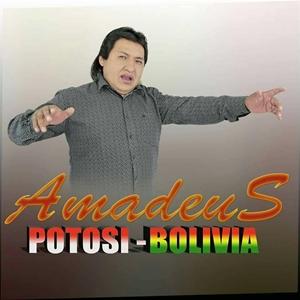 Amadeus De Potosí